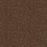 vero Leopard