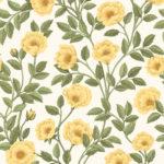 Marigold & Olive verdi su bianco