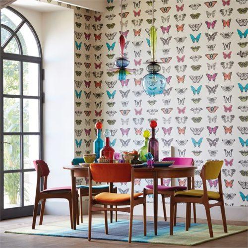 Amazilia Wallpapers