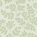Leaf Green / Avorio