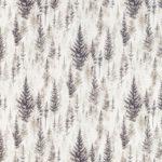 Pine Bark Elder