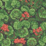 Rouge & Foglia verdi su nero
