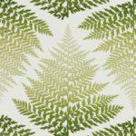 Smeraldo / Foresta