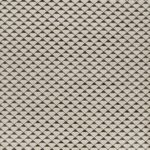 Charcoal / Ostrica